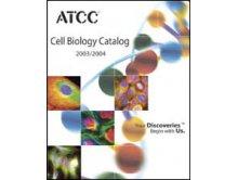 ATCC生孢梭菌