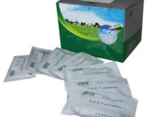 DST102链霉素胶体金标检测卡/抗生素金法检测卡